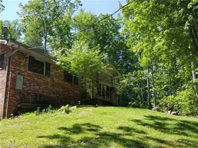 223 Holiday Drive, Hendersonville, NC 28739 - MLS#: 3282474
