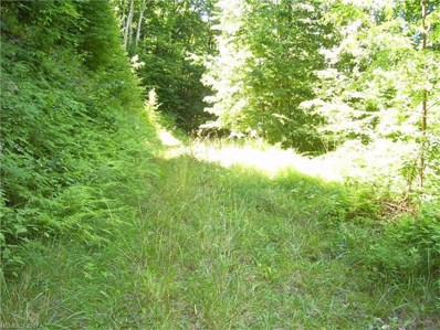 35 Trickle Creek Road UNIT 35, Waynesville, NC 28785 - MLS#: 3306660