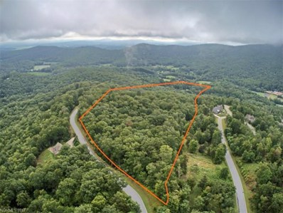 Old Homeplace, Mills River, NC 28759 - MLS#: 3310507