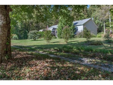 45 Rainbow Lake Circle, Black Mountain, NC 28711 - MLS#: 3323359