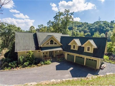 1128 Coyote Hollow Road, Waynesville, NC 28785 - MLS#: 3325274