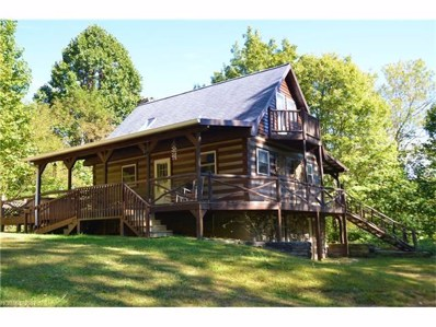 368 Poplar Gap Road, Hot Springs, NC 28743 - MLS#: 3327343