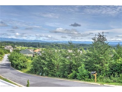 129 Climbing Aster Way UNIT 64, Asheville, NC 28806 - MLS#: 3331131