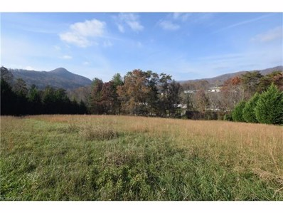 402 Tillery Road, Leicester, NC 28748 - MLS#: 3338488