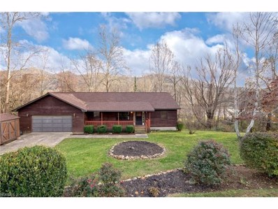 16 Camelfield Road, Weaverville, NC 28787 - MLS#: 3340901