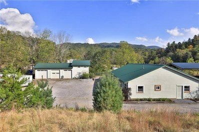 334 Bethany Church Road, Fairview, NC 28730 - MLS#: 3343712