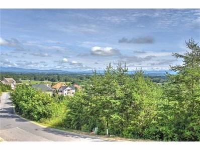133 Climbing Aster Way UNIT 65, Asheville, NC 28806 - MLS#: 3346740