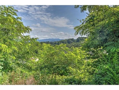137 Climbing Aster Way UNIT 66, Asheville, NC 28806 - MLS#: 3346755