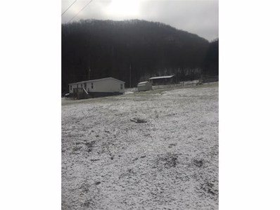 45 Dandelion Trail, Waynesville, NC 28785 - MLS#: 3351492