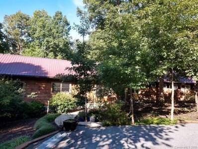 318 Springbrook Drive, Columbus, NC 28722 - MLS#: 3352217