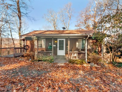 879 Spruce Flats Road, Maggie Valley, NC 28751 - MLS#: 3358962