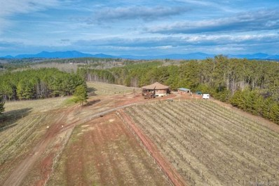 731 Phillips Dairy Road, Tryon, NC 28782 - MLS#: 3359764