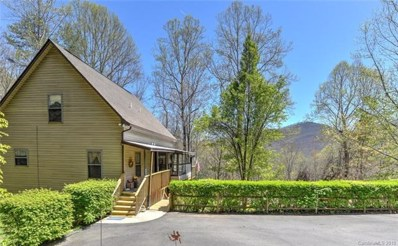 105 Ripple Branch, Barnardsville, NC 28709 - MLS#: 3359991
