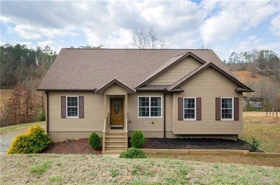 480 Morlin Acres Drive, Marshall, NC 28753 - MLS#: 3363411