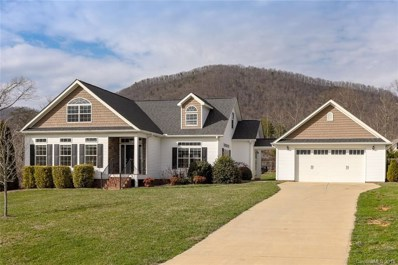 220 Pete Luther Road, Candler, NC 28715 - MLS#: 3364642