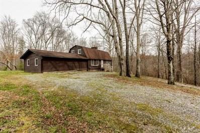 1933 John Shehan Road, Mill Spring, NC 28756 - MLS#: 3372509