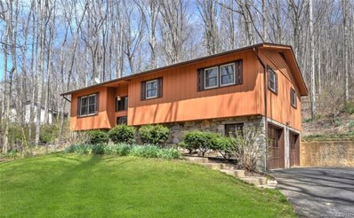 307 Pinners Cove Road, Asheville, NC 28803 - MLS#: 3374566