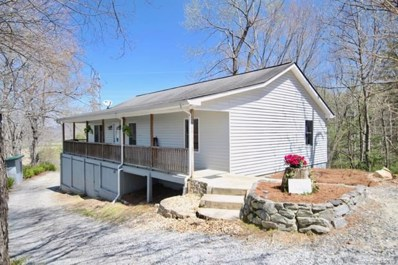 300 Seven Springs Road, Pisgah Forest, NC 28768 - MLS#: 3380789
