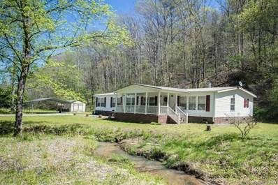 341 Island Creek Road, Lake Lure, NC 28746 - MLS#: 3381300