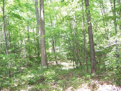 Cabin Creek UNIT 39, Mars Hill, NC 28754 - MLS#: 3381395