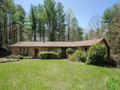 180 Tranquility Place, Hendersonville, NC 28739 - MLS#: 3381497