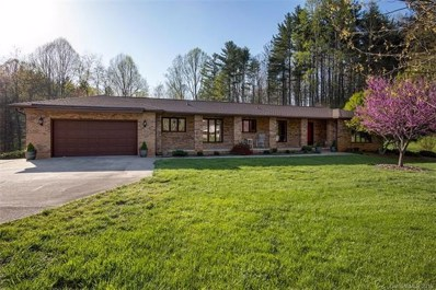 206 Valley View Drive, Pisgah Forest, NC 28768 - MLS#: 3382892