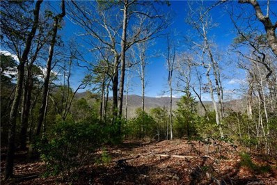 1604 Country View Way UNIT LOT 162, Arden, NC 28704 - MLS#: 3383826