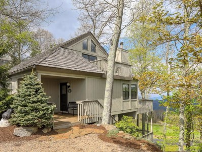101 Lookout Loop, Burnsville, NC 28714 - MLS#: 3387486