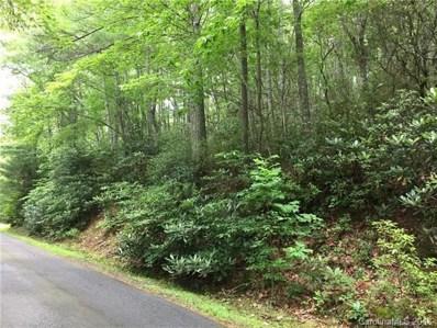 107 Deer Run Lane, Asheville, NC 28805 - MLS#: 3388185