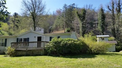 238 Happy Valley Road, Sylva, NC 28779 - MLS#: 3390667
