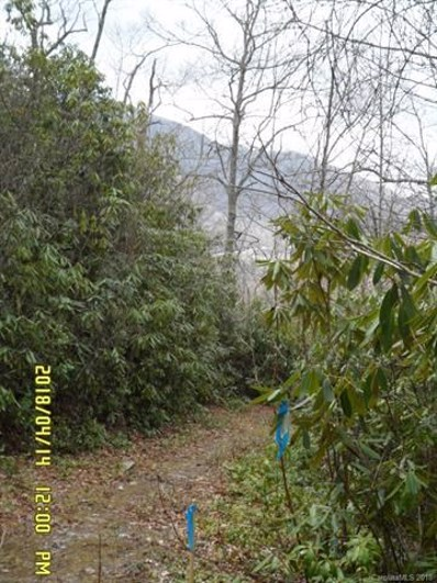 Bent Tree, Waynesville, NC 28751 - MLS#: 3391085