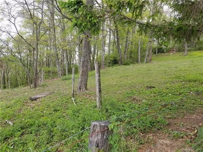 101 Rose Hill Road, Asheville, NC 28803 - MLS#: 3391160