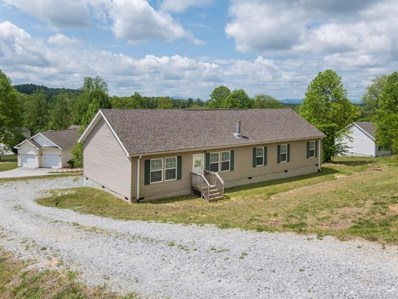 51 W Long View Vista Lane, Hendersonville, NC 28792 - MLS#: 3391945