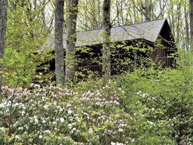 131 Autumn Forest Drive, Hendersonville, NC 28792 - MLS#: 3392089