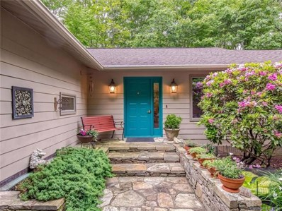 1320 Campbell Drive, Pisgah Forest, NC 28768 - MLS#: 3393751
