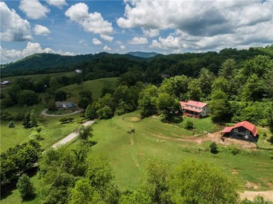 48 Silent Forest Drive, Canton, NC 28716 - MLS#: 3394010