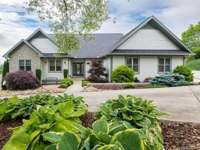 347 Vista Falls Road, Mills River, NC 28759 - MLS#: 3394405