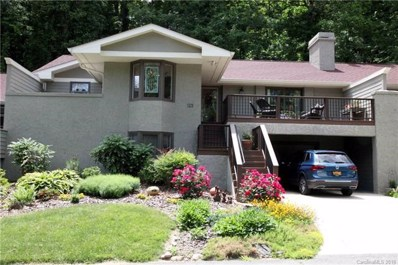 123 Willow Lake Drive, Asheville, NC 28805 - MLS#: 3397683
