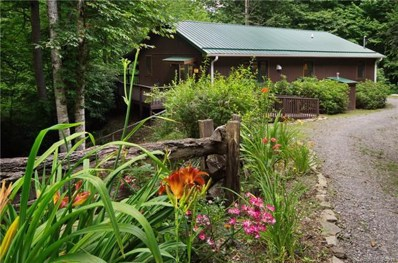 35 Dolphin Drive, Maggie Valley, NC 28751 - MLS#: 3406650
