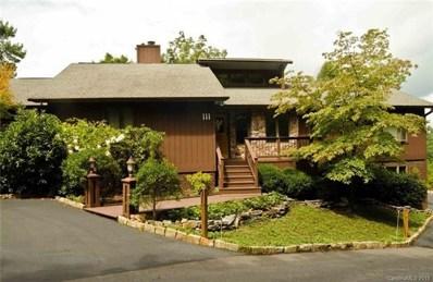 111 Indian Hills Drive, Brevard, NC 28712 - MLS#: 3406984