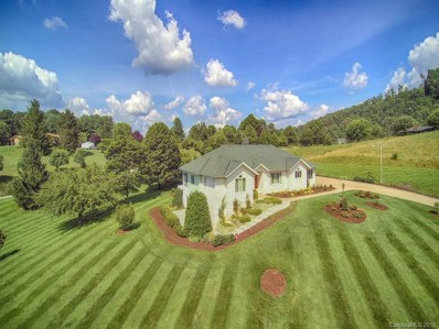 63 Pondview Drive, Clyde, NC 28721 - MLS#: 3410183