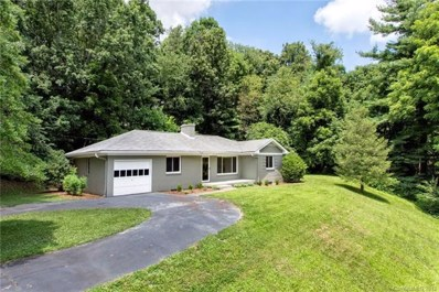 19 Mayfield Road, Asheville, NC 28804 - MLS#: 3412382