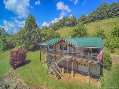 1290 Rabbit Skin Road, Waynesville, NC 28785 - MLS#: 3412647