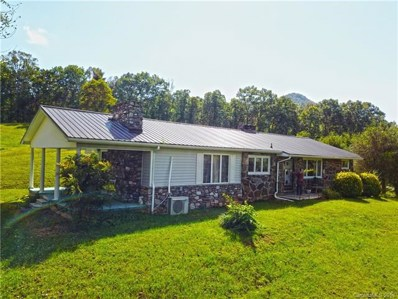 3216 New Leicester Highway, Leicester, NC 28748 - MLS#: 3413193