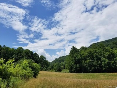 Rabbit Skin UNIT Tract 1A, Waynesville, NC 28785 - MLS#: 3417971