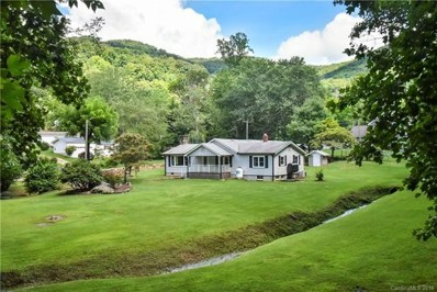 91 Rice Branch Road, Asheville, NC 28804 - MLS#: 3421209