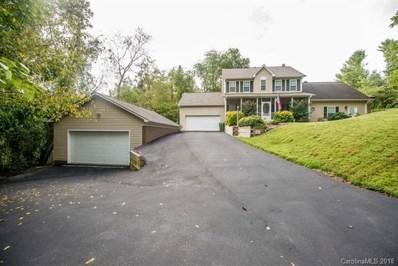 251 Old Haw Creek Road, Asheville, NC 28805 - MLS#: 3421570