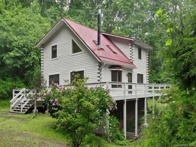 172 Muszynski Drive, Canton, NC 28716 - MLS#: 3421985