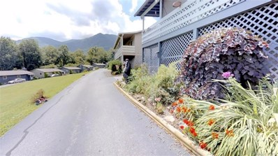 20 Boulder Lane, Maggie Valley, NC 28751 - MLS#: 3422521