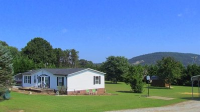 1317 Poole Gooden Road, Hiddenite, NC 28636 - MLS#: 3424576